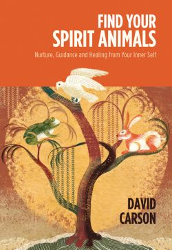 A guide to finding your spirit animals
