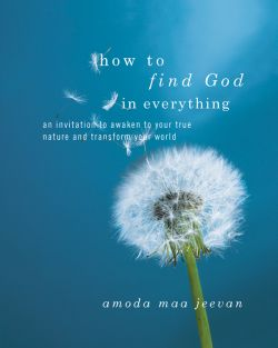 IW How to Find God in Everything_HB_UKblue.indd