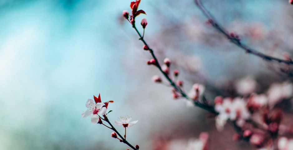 The Magic of the Spring Equinox