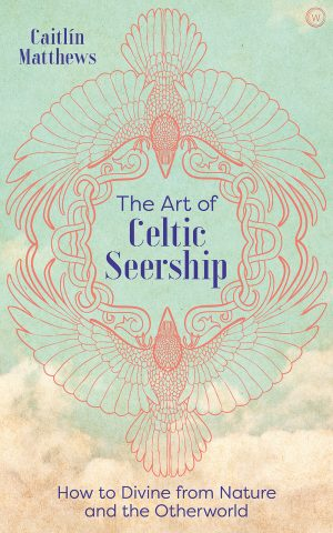 book cover the art of celtic seership
