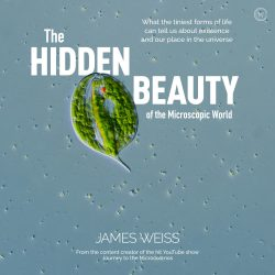 book cover the hidden beauty of the microscopic world