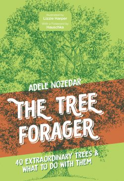 book cover the tree forager by adele nozedar